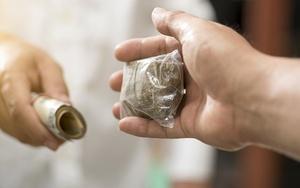 Какой срок грозит за сбыт наркотиков